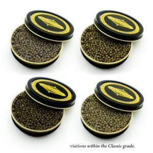 Marshallberg Farm Osetra • Caviar Delivery