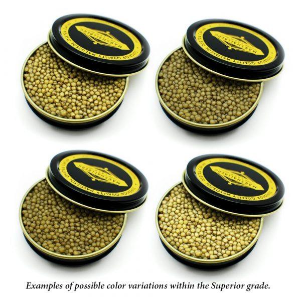 superior-osetra-golds