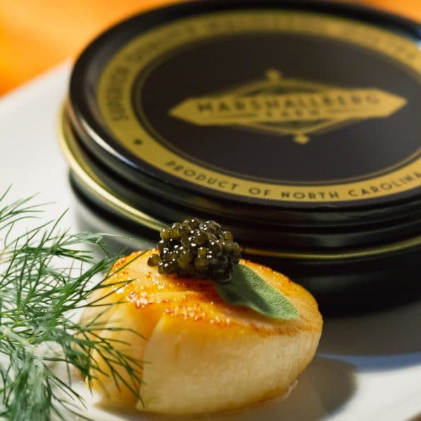 scallop-caviar