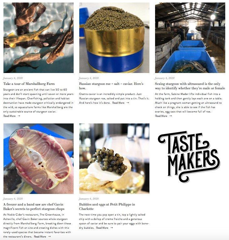 tastemakers-marshallberg-farm
