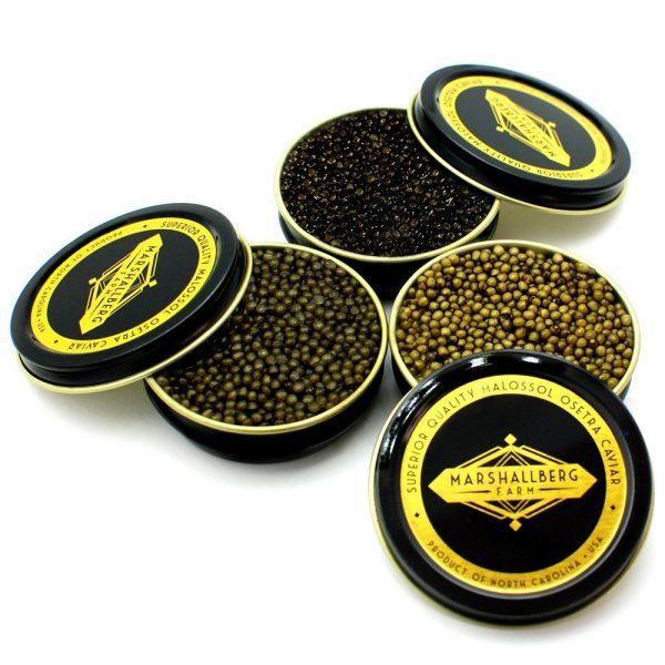 osetra-caviar