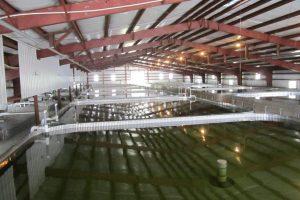 facility-a