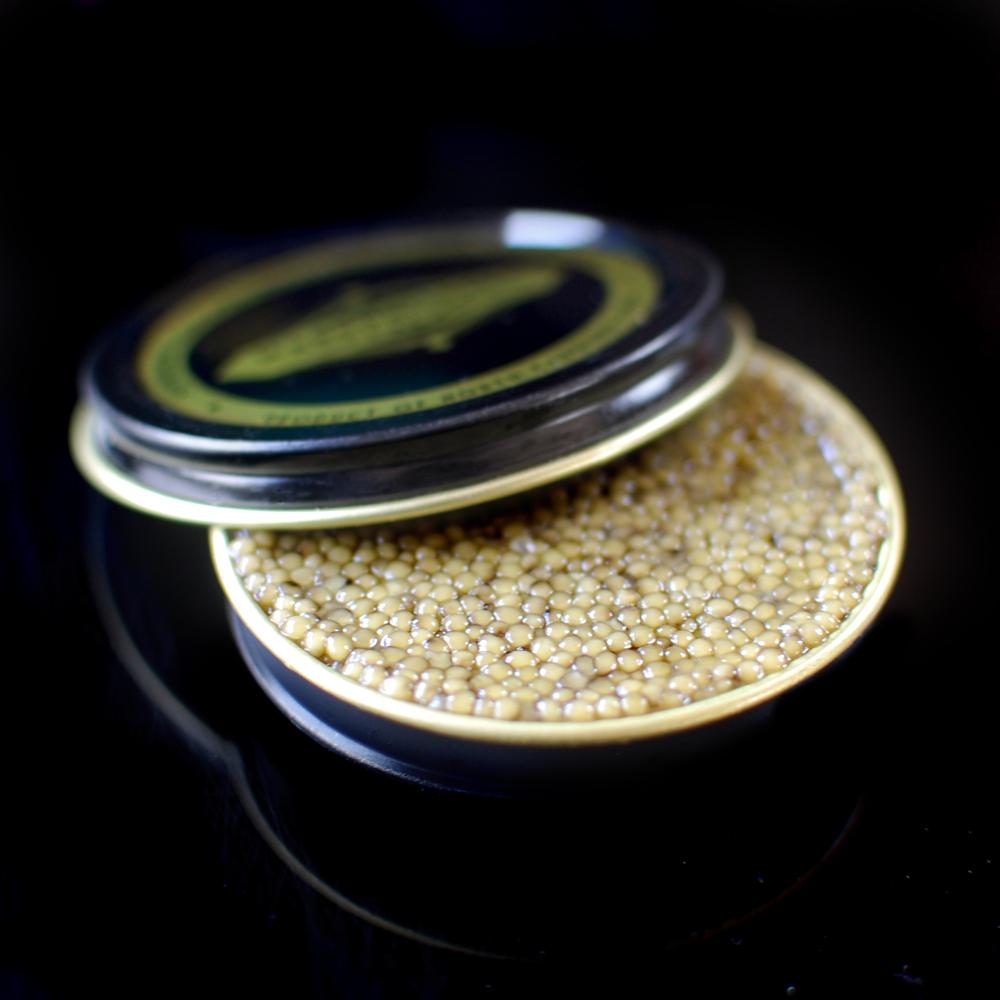 gold-caviar